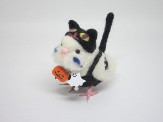 新作 ハロウィン限定 黒猫着ぐるみセキセイインコ ハルクイン水色 鳥 ゆこりん工房