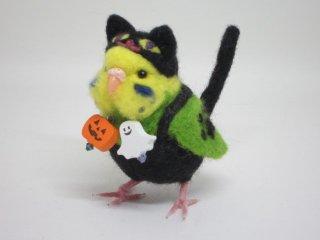 新作 ハロウィン限定 黒猫着ぐるみセキセイインコ 黄緑 鼻ピンク 鳥 ゆこりん工房