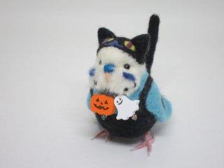 新作 ハロウィン限定 黒猫着ぐるみセキセイインコ 水色 鳥 ゆこりん工房