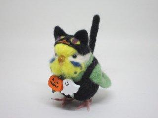 新作 ハロウィン限定 黒猫着ぐるみセキセイインコ イエローフェイス黄緑 鳥 ゆこりん工房