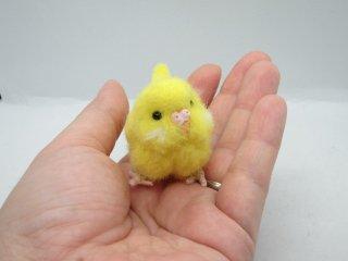 新作 ミニチュア 羊毛フェルトリアルで可愛いセキセイインコ ルチノ黒目 ゆこりん工房 鳥