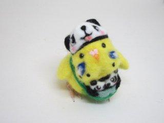 新作 双子パンダ誕生記念 羊毛フェルトパンダ着ぐるみセキセイインコ ゆこりん工房 ハルクイン黄
