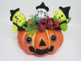 ハロウィン 羊毛フェルト可愛い3羽セキセイインコかぼちゃお化けオブジェ ゆこりん工房 鳥