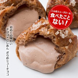 【テレビで紹介】ざらめシューチョコ10個入 チョコとこしあんのコラボ 最高級チョコベルギー産