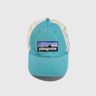 vintage patagonia cap