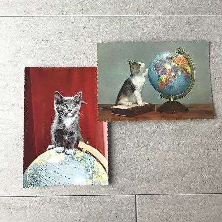 子猫と地球儀のポストカード 2枚組