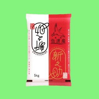 【新米】令和元年産 魚沼産コシヒカリ ※塩沢地区限定品10k(5k×2袋) 魚沼コシヒカリの産地でも特別美味しいと評価されているお米