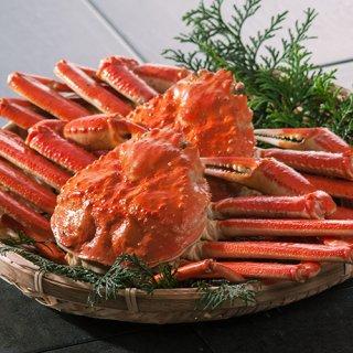 【新潟のお土産】新潟産 本ずわい蟹2尾 ギフトセット