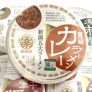 新潟ラーメンどんぶり カレー(麺110g)カレーラーメンスープ付き