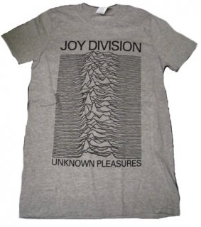 JOY DIVISION「UNKNOWN GRAY」Tシャツ<img class='new_mark_img2' src='//img.shop-pro.jp/img/new/icons11.gif' style='border:none;display:inline;margin:0px;padding:0px;width:auto;' />