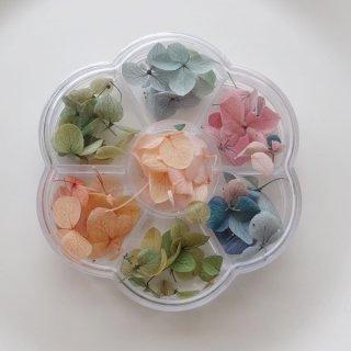紫陽花のドライフラワー・7色セット(1ケース)