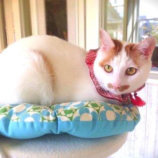 猫ざぶとん(中・大)北欧フラワー・猫パッチ