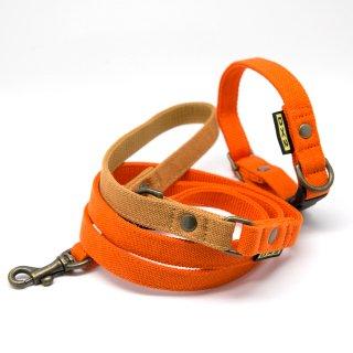 カラー&リードセット 15mm幅 バイカラー(オレンジ)×首輪オレンジ