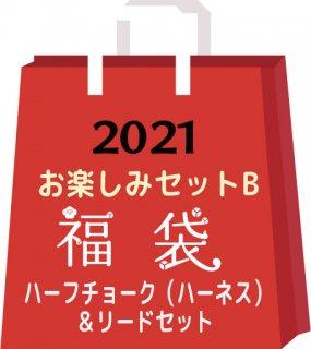 2021お楽しみセットB<img class='new_mark_img2' src='https://img.shop-pro.jp/img/new/icons15.gif' style='border:none;display:inline;margin:0px;padding:0px;width:auto;' />