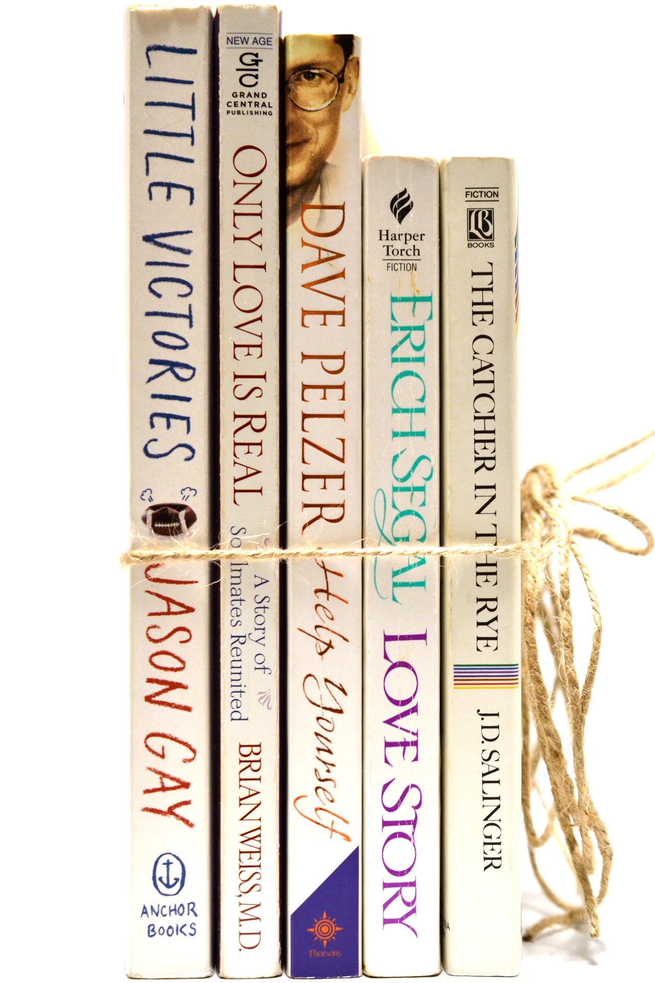 Decorative Books - DAVE PELZER 全5冊