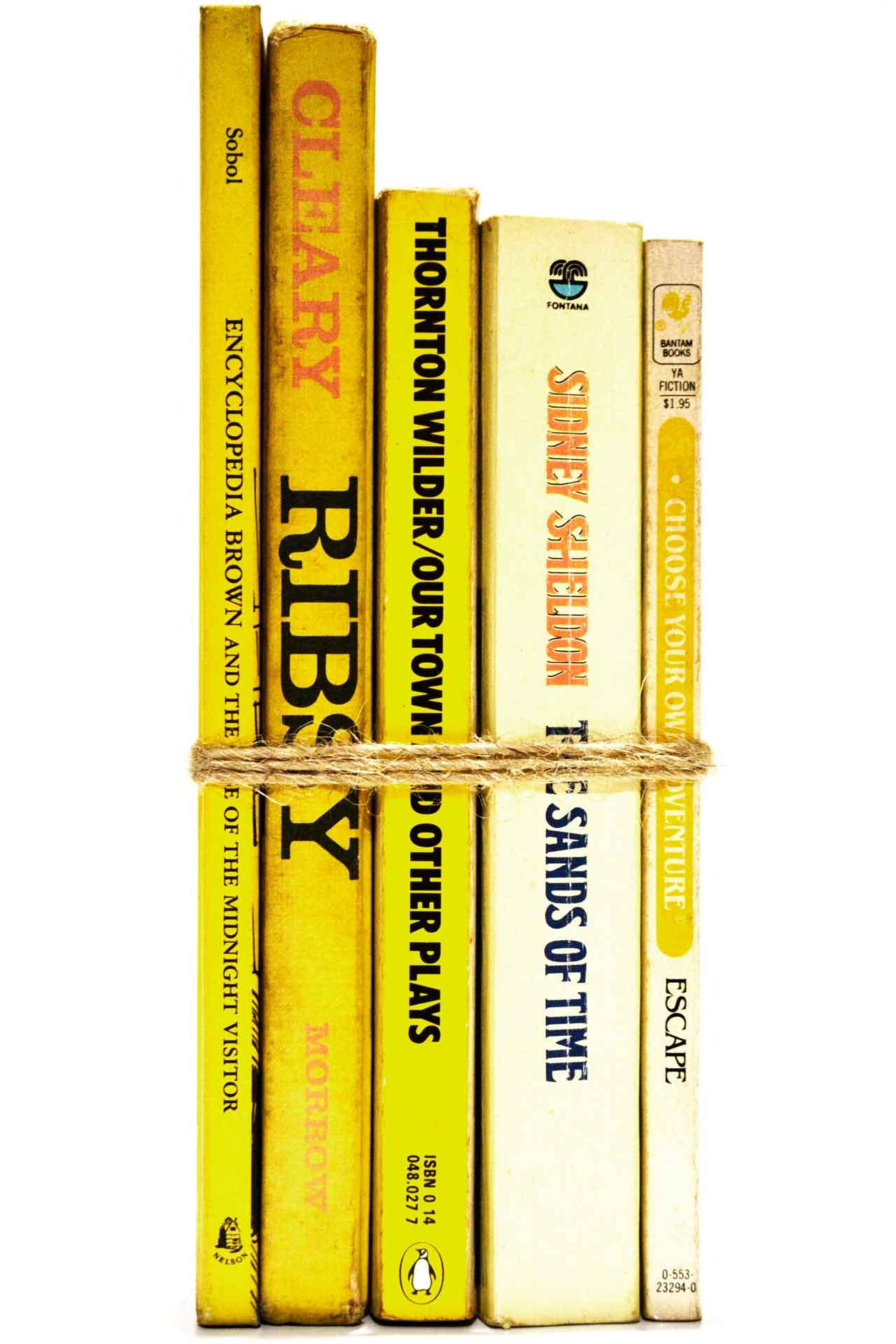 洋書 ディスプレイ用 5冊セット RZ-5027
