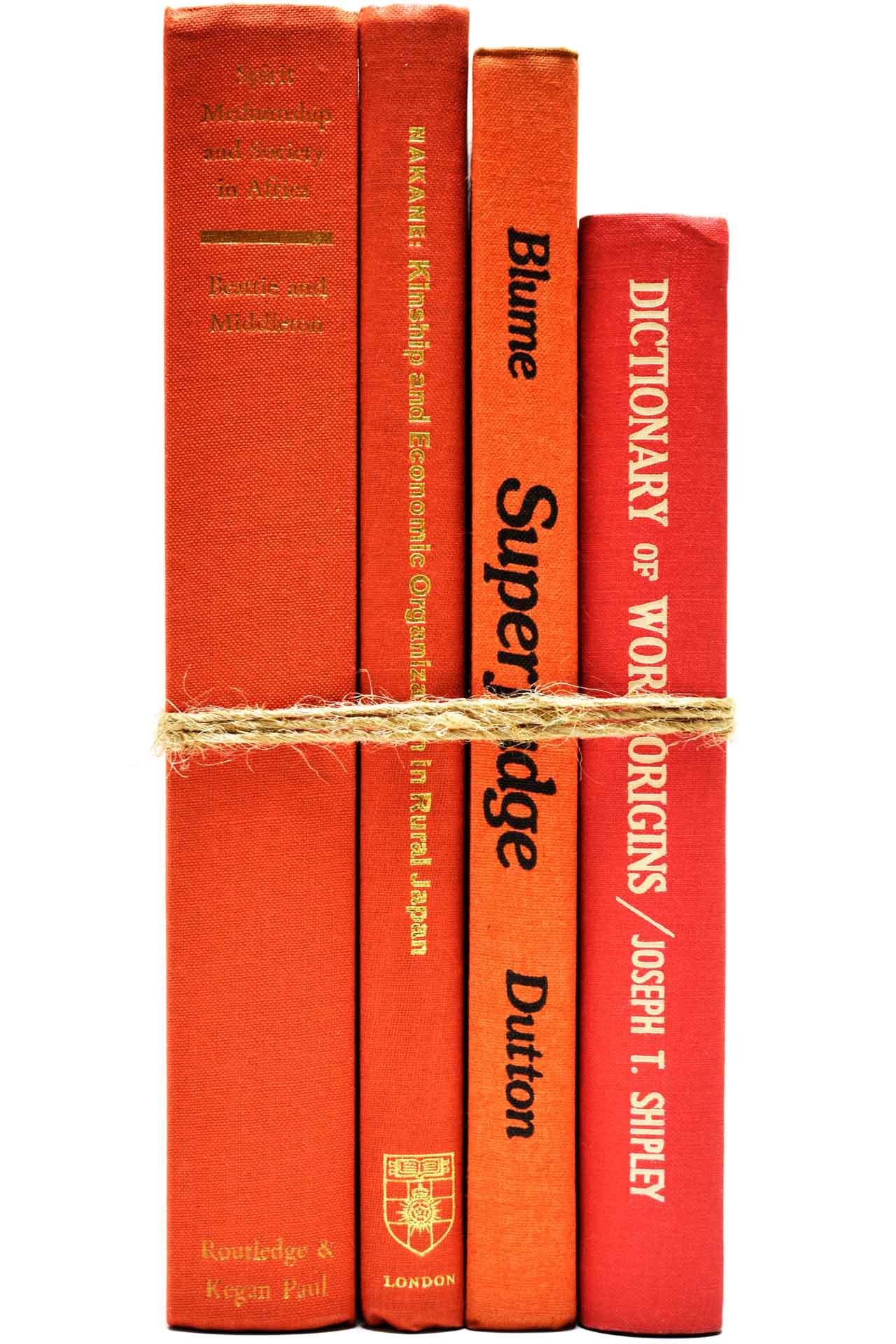 洋書 ディスプレイ用 4冊セット RZ-5171