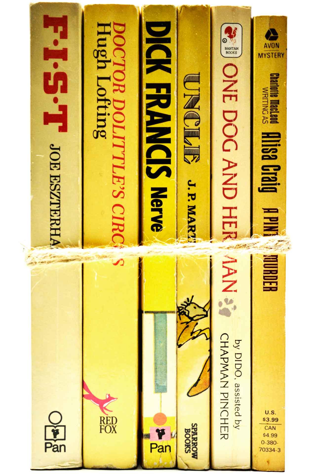 洋書 ディスプレイ用 6冊セット RZ-5477