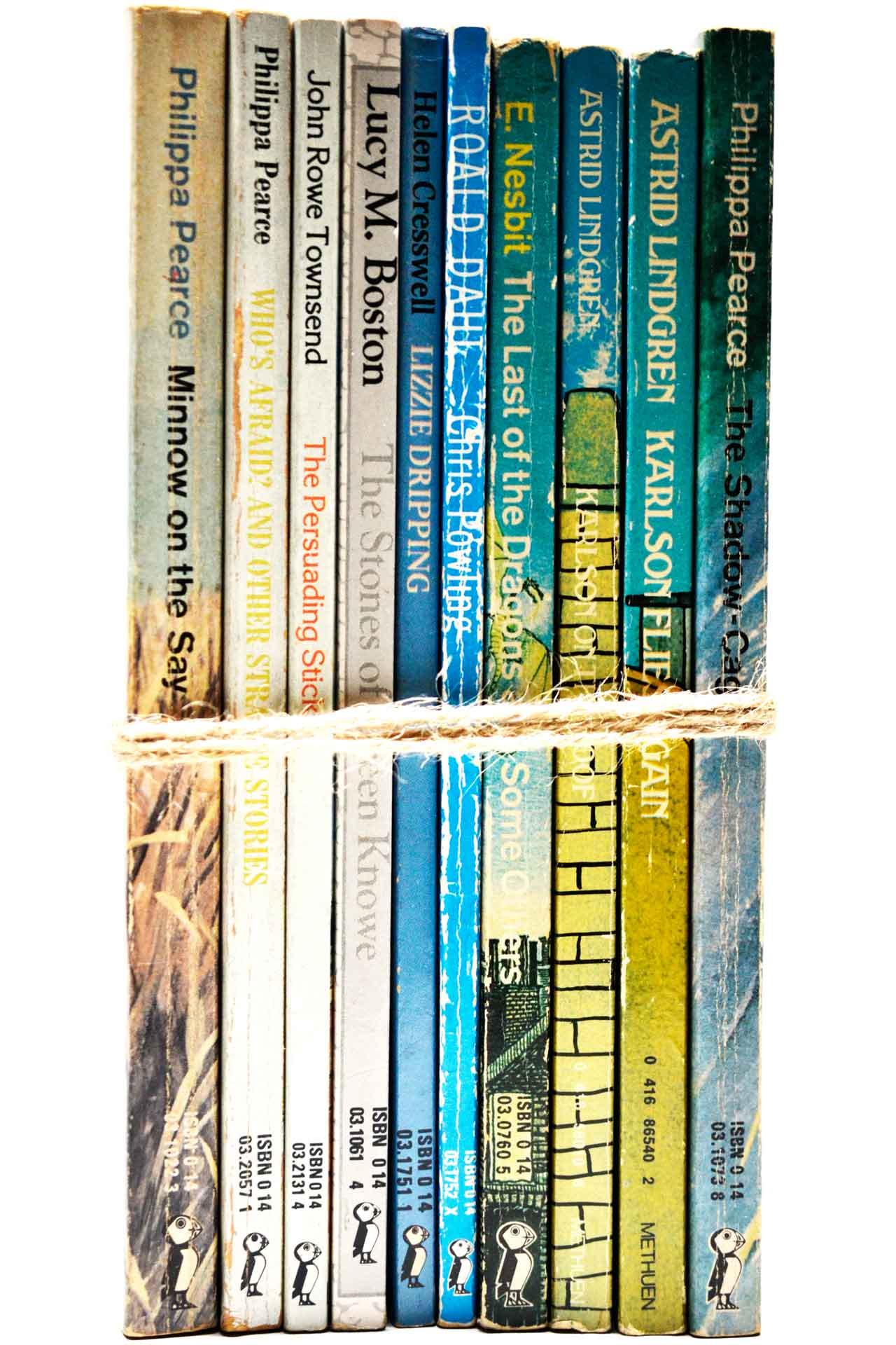 洋書 ディスプレイ用 10冊セット RZ-5488