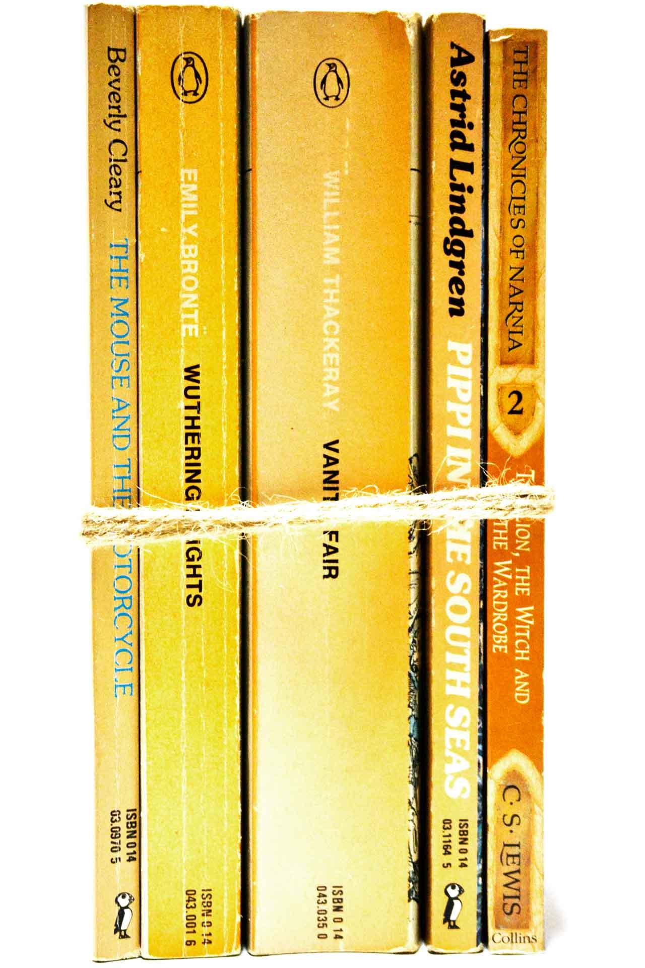 洋書 ディスプレイ用 5冊セット RZ-5526
