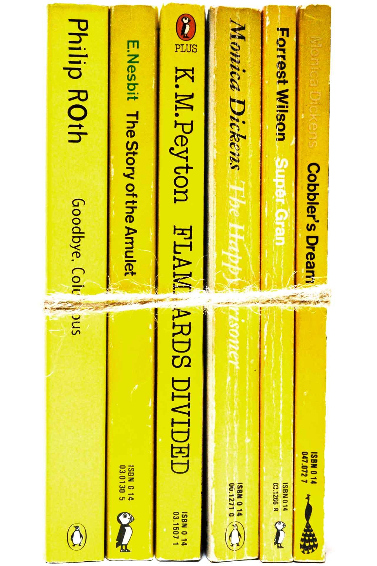 洋書 ディスプレイ用 6冊セット RZ-5529