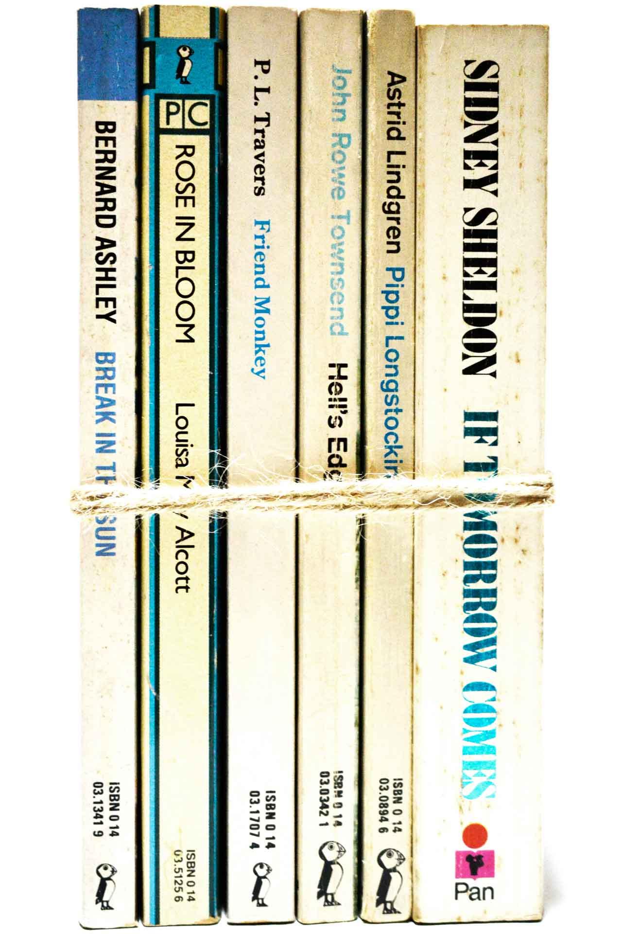 洋書 ディスプレイ用 6冊セット RZ-5532