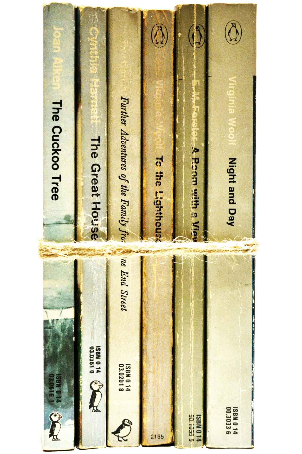 洋書 ディスプレイ用 6冊セット RZ-5539