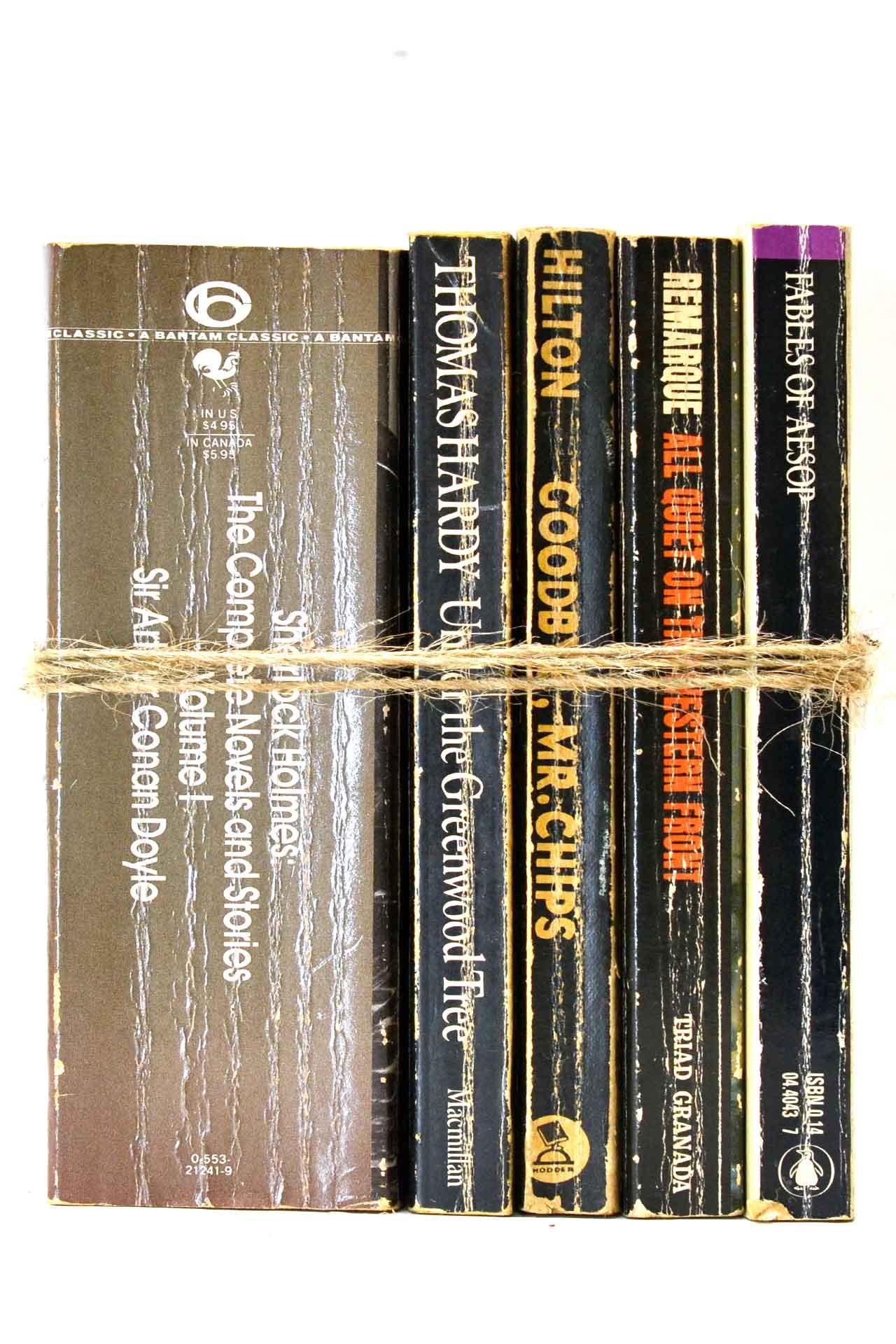 洋書 ディスプレイ用 5冊セット RZ-5629