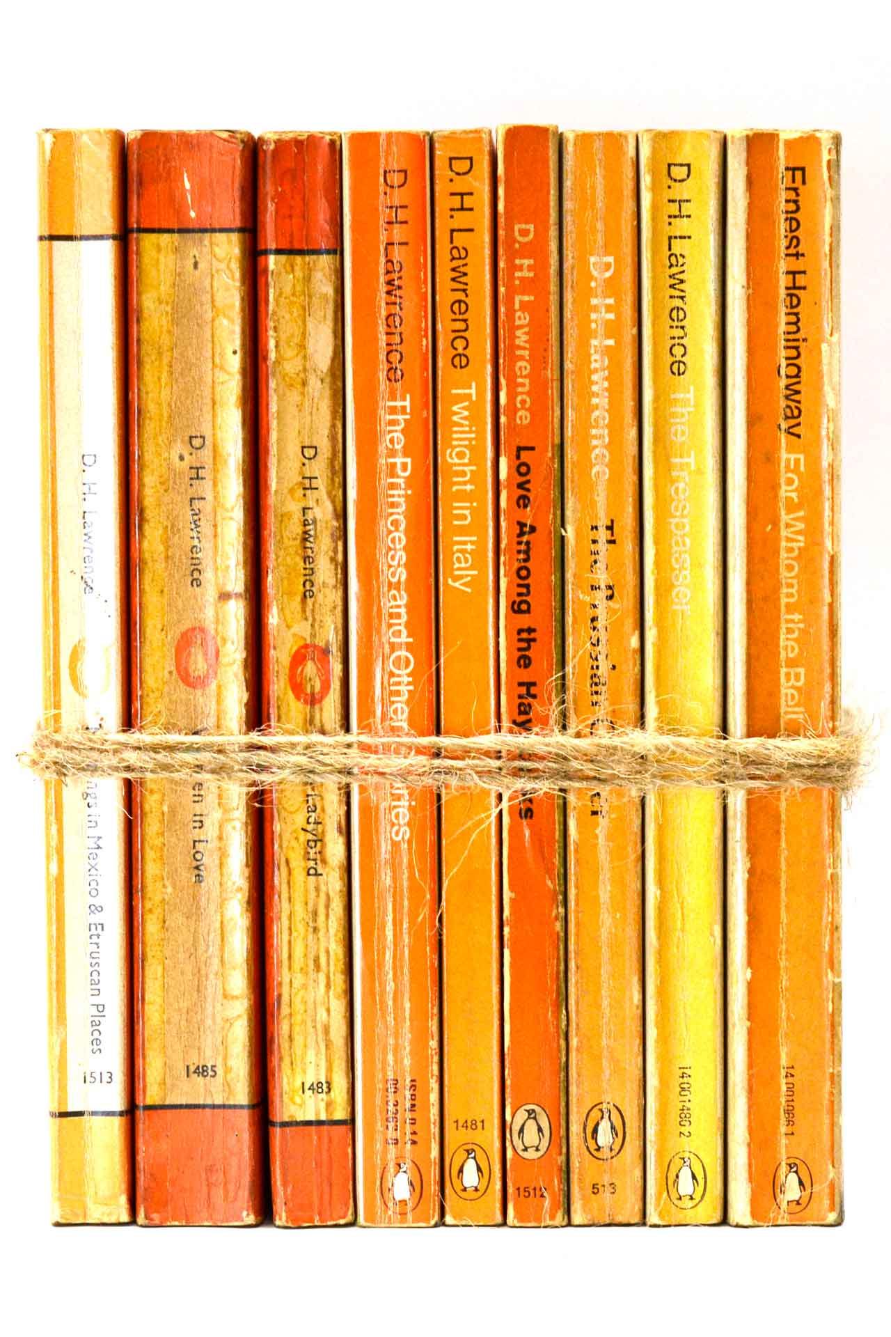洋書 ディスプレイ用 9冊セット RZ-5630
