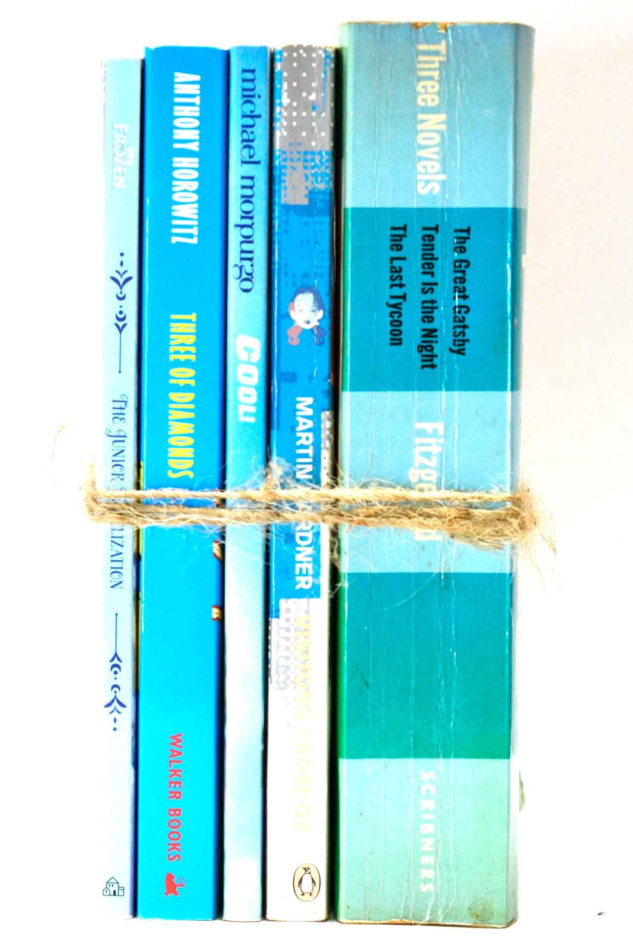 洋書 ディスプレイ用 5冊セット RZ-5633