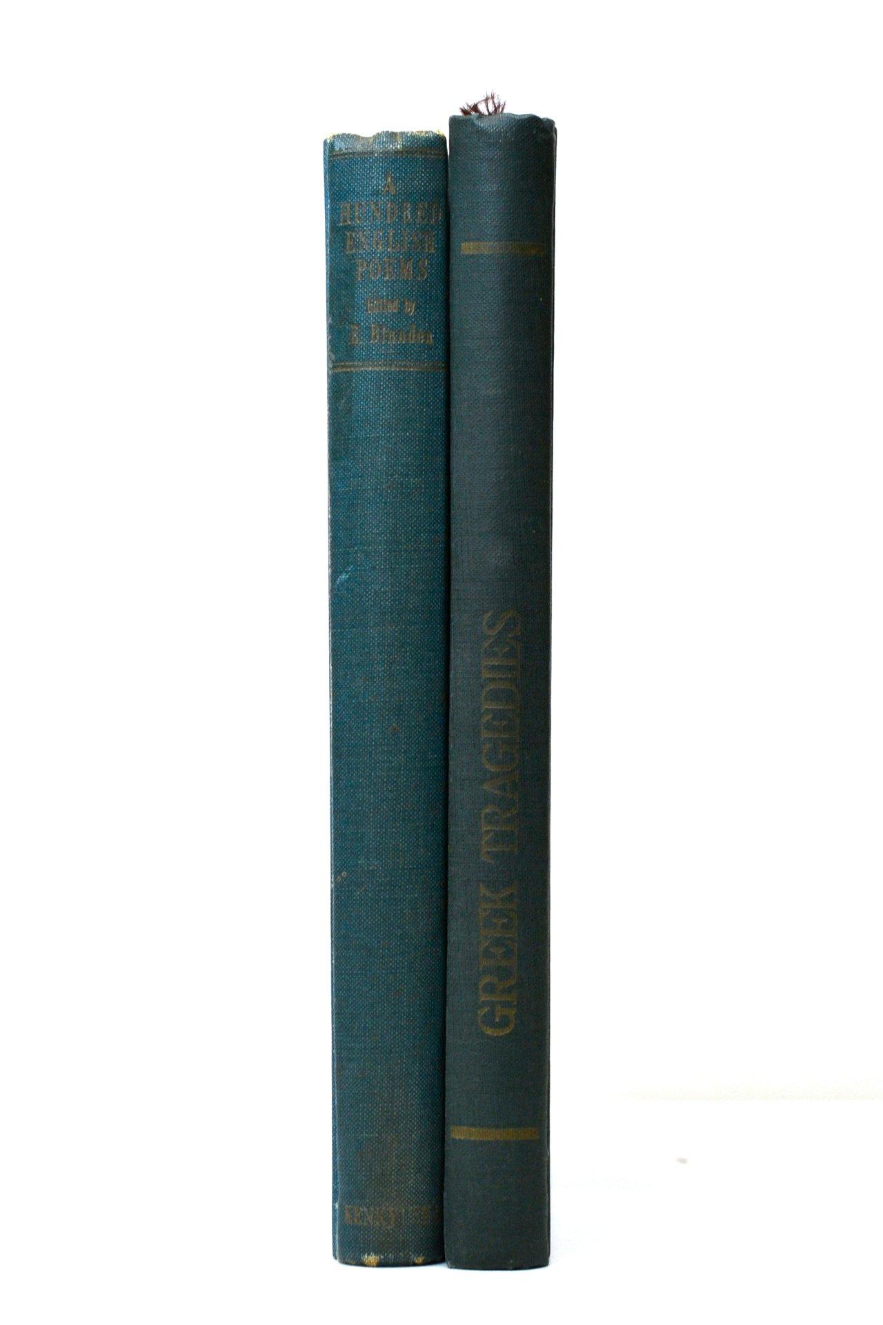 洋書 ディスプレイ用 2冊セット RZ-5725
