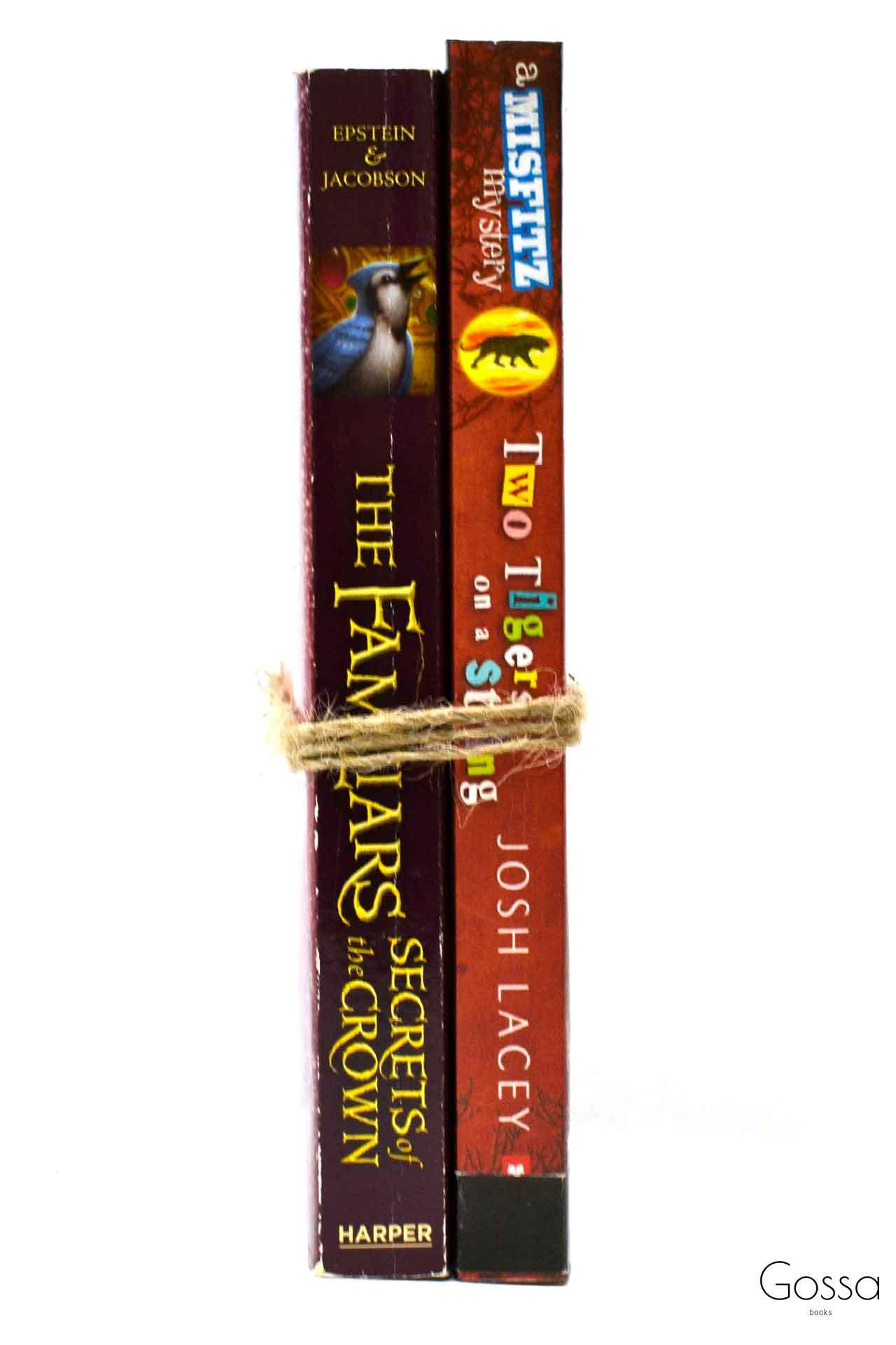 洋書 ディスプレイ用 2冊セット RZ-5897