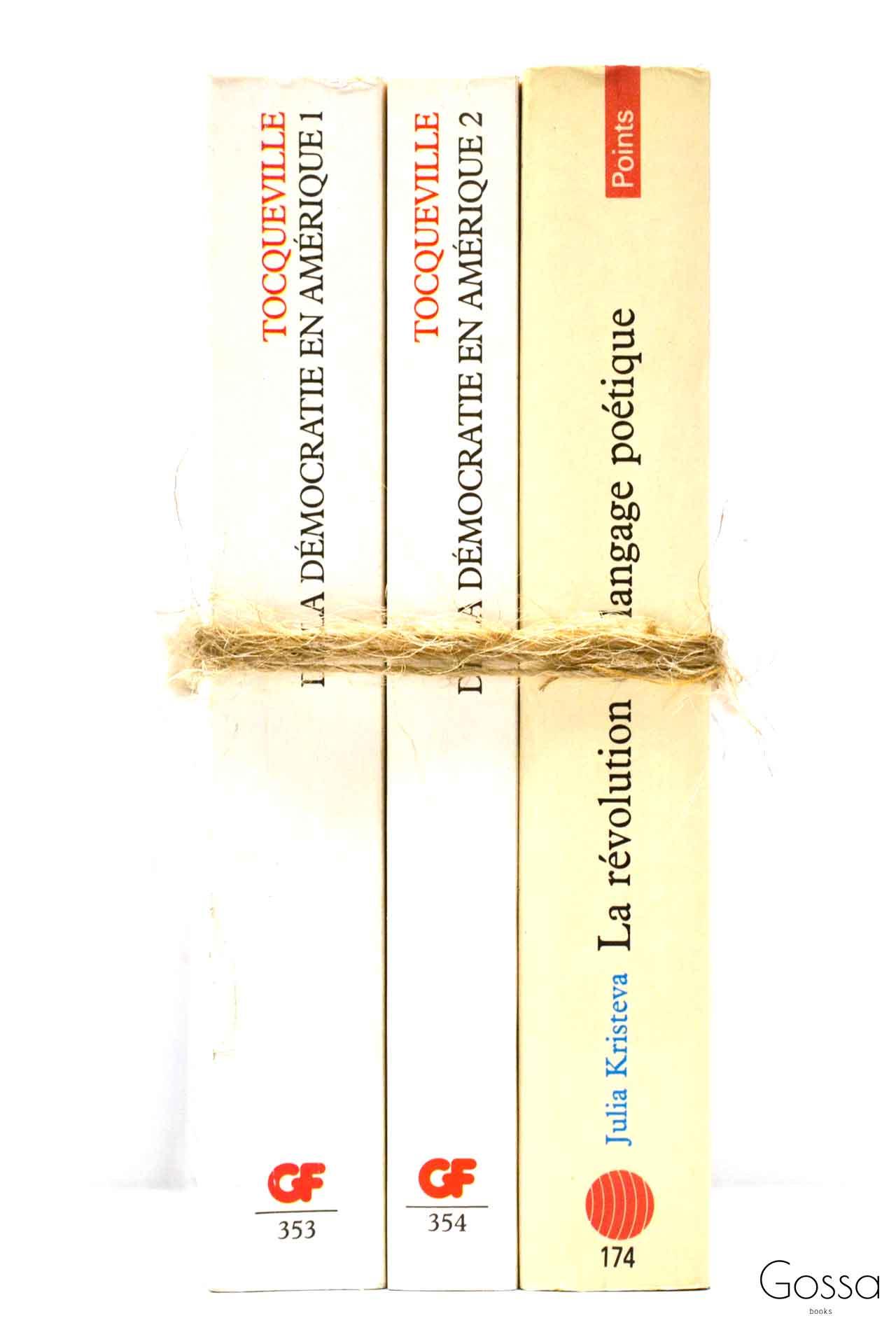 洋書 ディスプレイ用 3冊セット RZ-6021