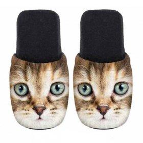 ユーロスポンジ CATS EL TIGRE Lサイズ スリッパ eurospugna  ユニセックス メンズ レディース ルームシューズ 猫 ねこ ネコ