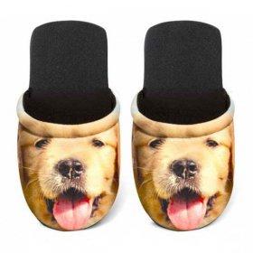 ユーロスポンジ DOGS GOLDEN RETRIEVER Mサイズ スリッパ eurospugna  ユニセックス メンズ レディース ルームシューズ 犬 ゴールデンレトリバー