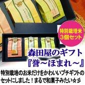 森田屋のギフト『誉ーほまれー』300g×3個入り 高級化粧箱入[送料別]