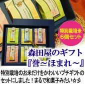 森田屋のギフト『誉ーほまれー』 300g×6個入り 高級化粧箱入[送料別]