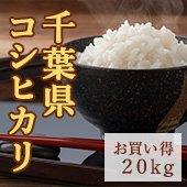 【令和2年産】千葉県 コシヒカリ<まとめ売り20kg玄米>[送料別]