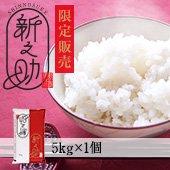 【令和1年度】メディアで話題沸騰!新潟県の新品種!新之助 新潟県 5kg(5kg×1袋)[送料別]