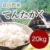 【令和2年度】富山県てんたかく<20kg玄米まとめ売り> [送料別]
