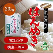 【令和2年度】山形県 はえぬき<まとめ売り20kg玄米>[送料別]