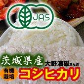 【令和2年産】<無洗米>JAS有機 大野満雄さんのコシヒカリ [送料別] 茨城県