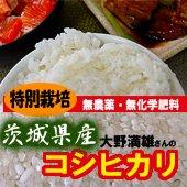 【令和1年産】<無洗米>特別栽培 大野満雄さんのコシヒカリ [送料別] 茨城県