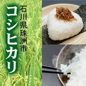 【令和2年産】<無洗米>珠洲 コシヒカリ[送料別] 石川県