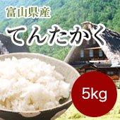 【令和2年産】<無洗米>てんたかく[送料別]富山県