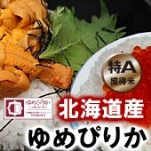【令和2年産】<無洗米>ゆめぴりか [送料別] 北海道