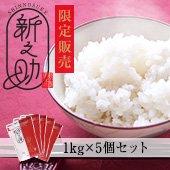 【令和1年産】<無洗米>メディアで話題沸騰!新潟県の新品種!新之助 新潟県 5kg(1kg×5袋)[送料別]