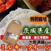 【令和1年産】<無洗米>特別栽培 大野満雄さんのミルキークイーン<減農薬、無化学肥料>[送料別] 茨城県 5kg