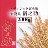 【令和3年産】千葉県 コシヒカリ<まとめ売り25kg玄米>[送料別]