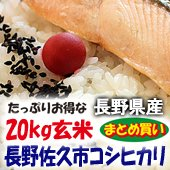 【令和1年度】長野県佐久市コシヒカリ<20kg玄米まとめ売り> [送料別]